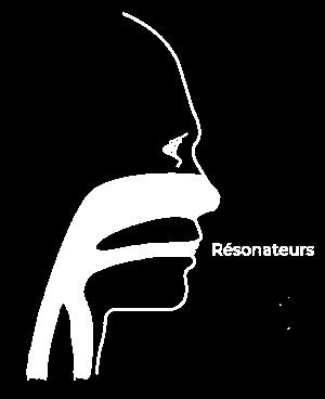 resonateurs2